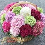 Корзина красивых цветов