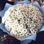 Букет из 25 белых ромашковых хризантем